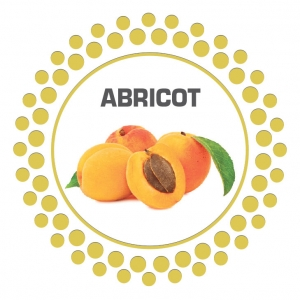 sorbet-abricot