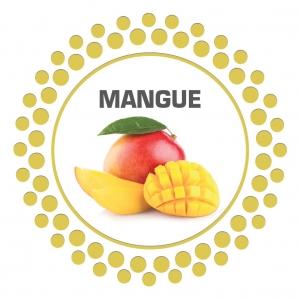 sorbet-barbarac-mangue